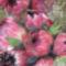 articsóka virágja