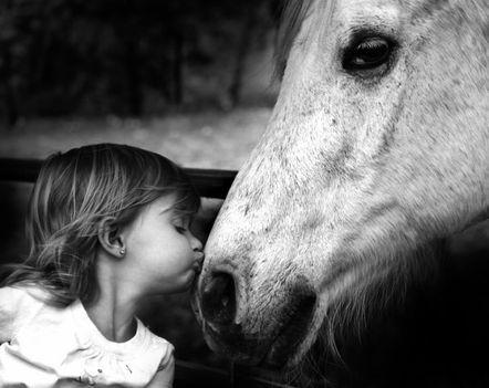 """""""állati"""" csók 39"""