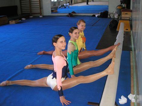 Aerobic sport 1