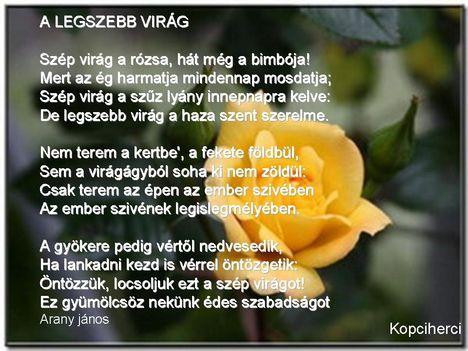Szívnek Virága