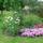 Pozsgai Gyuláné Kati kertje