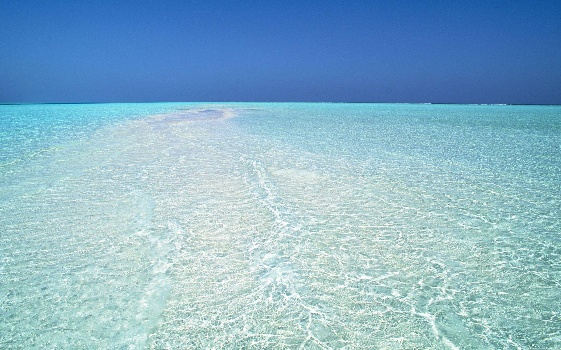 fondos de mar transparente - photo #43