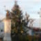Ürömi karácsonyfa