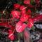virágcsokor 6