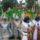 Karneval-001_558249_88338_t