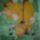 mesefigurák, gyerekszoba festés (saját munka)