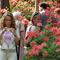 jeli arboretum1