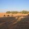 Tunéziai sivatag
