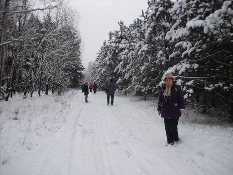 Téli séta az Alföldi - kéken Ásotthalom  -12 km -032