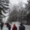 Téli séta az Alföldi - kéken Ásotthalom  -12 km -033