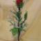 rózsa megrendelésre