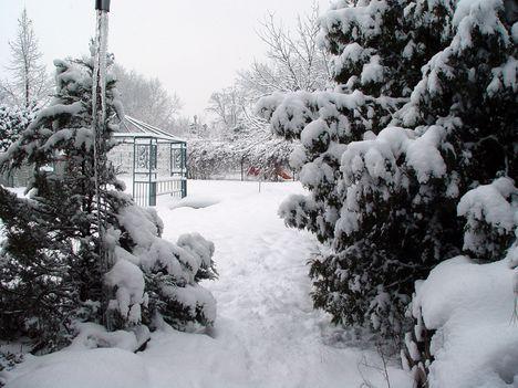 1 Szigetszentmiklóson a kertünk a 7-i hóhullásban