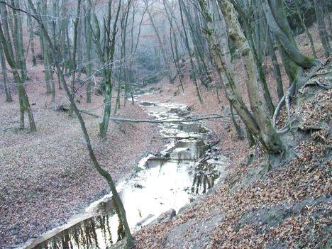Bakonyi kirándulás, Cuha-völgy 10