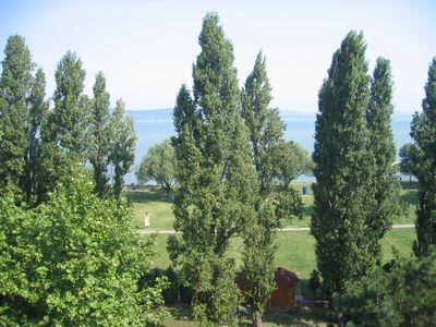 Magyarország 6