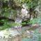 Vinye, Cuha-völgy 5