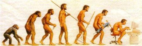 A hátfájás evolúciója