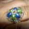 Lovas Csilla: kék-zöld rizsgyűrű