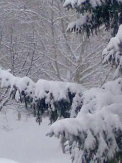 Téli kép 2