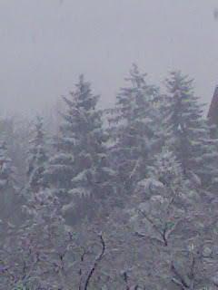 Téli kép 4