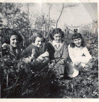 1958. tavasz