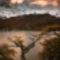 Autumn-in-Patagonia-MAG1