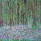 virágos erdő