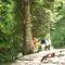 Plitvicei,vízesések 4 3