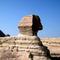 Egyiptomi nyaralás 570