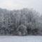 Puszta télen