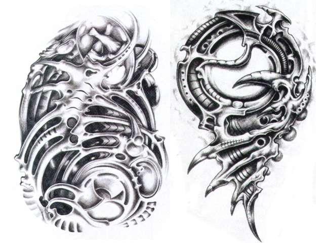 stingers tattoo biomechanic 2