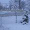 Februári tél...nálunk....