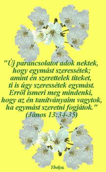 idézetek 3