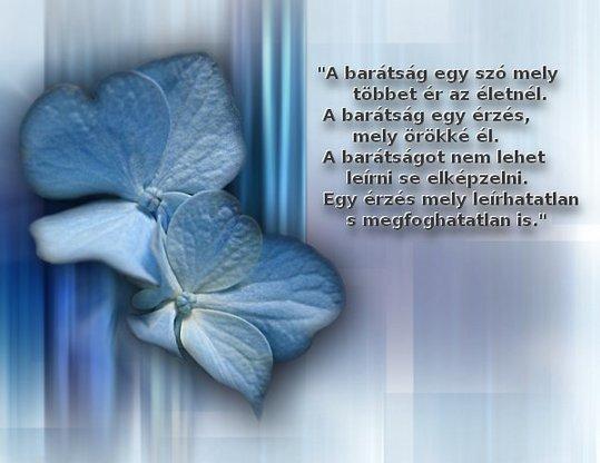 szép igaz idézetek Család: Szép idézetek 5 (kép)