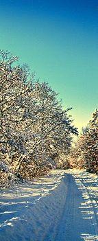 Még egy csipet tél..