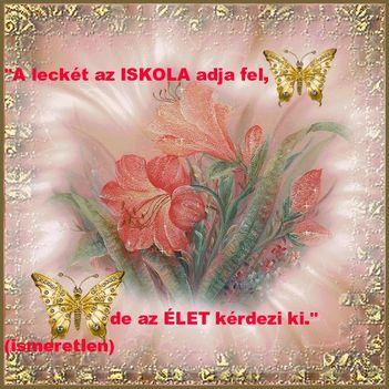 1219844223_a_lecke