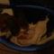 Bigi, a beagle kiskutya 5