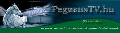 pegaweb1 másolata