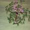 rózsaszín virágú fa