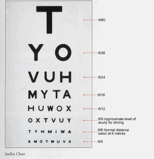 pocket snellen eye chart