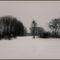 Hóban-fákkal-térben