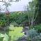 tavaszi kert részlet
