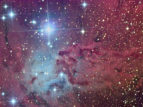 foxfur_nebula