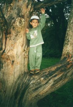 hát fenn vagyok a fán