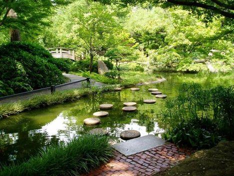 japán kert 10