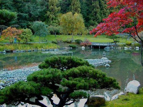 japán kert 2