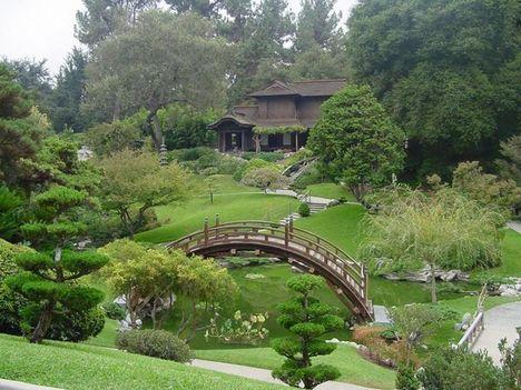 japán kert 3