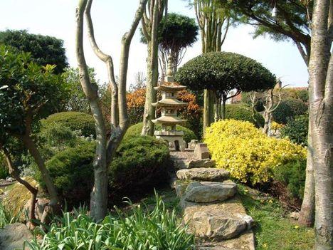 japán kert 4