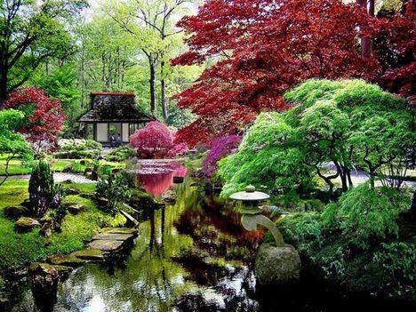 japán kert 5