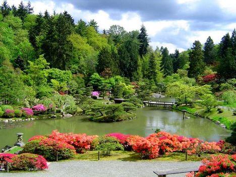 japán kert 6