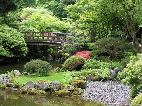 japán kert 8